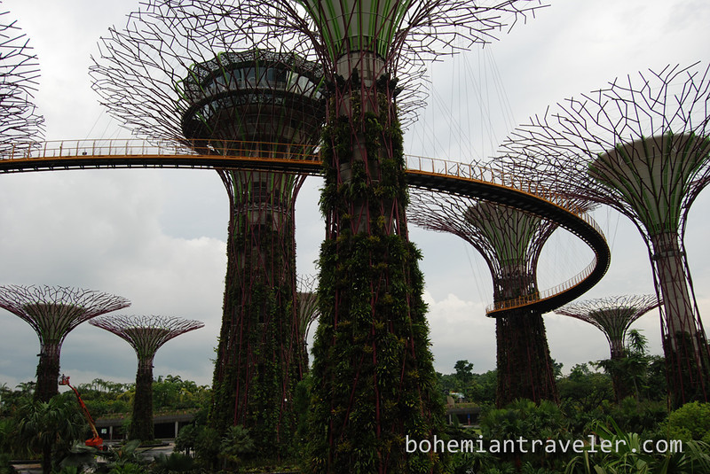 Super Trees at Gardens by the Bay.jpg