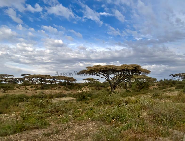 Tanzania Terrain