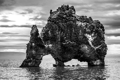 Hvitserkur -  the Dinosaur Rock