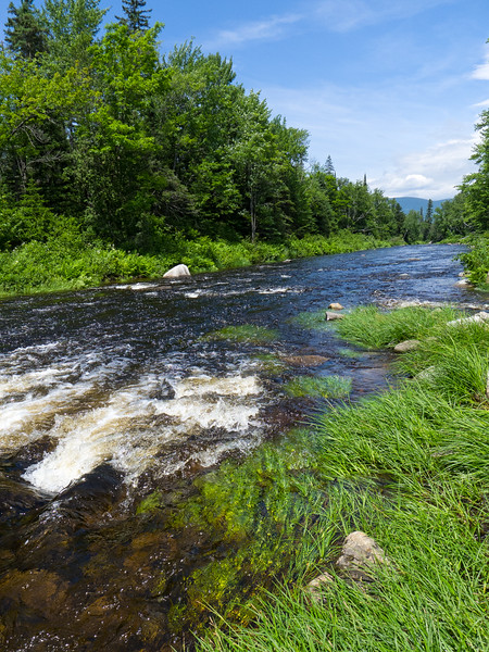 Quill Pond Brook, Dallas Plantation (near Rangeley), Maine (70748)