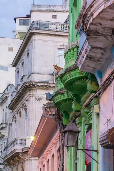 Textures: Havana