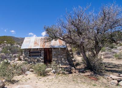 Palm Canyon to Rock House via Oak Canyon Trail    4.5.14