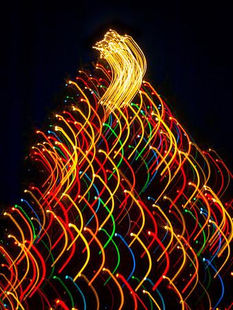 Chagrin Falls Abstract Tree Lights - 2013