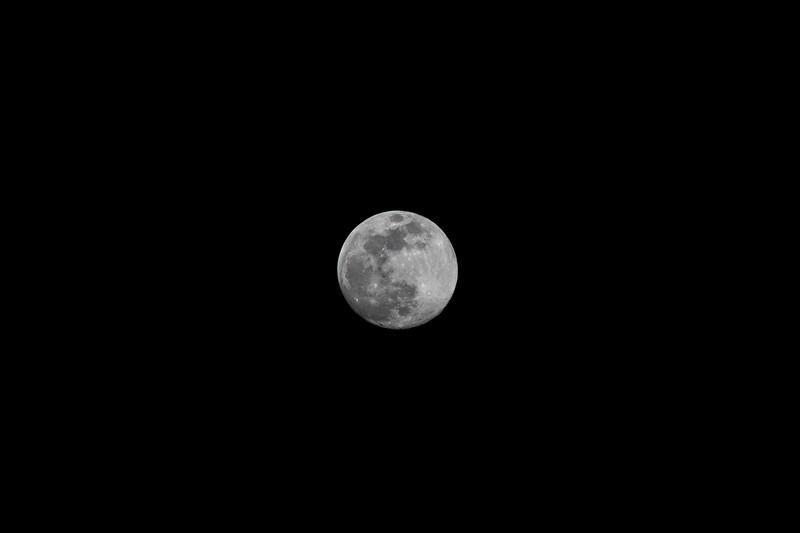 moon 3-19-19.jpg