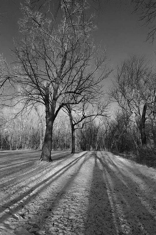 Sac & Fox Trail Walk - 12-26-04