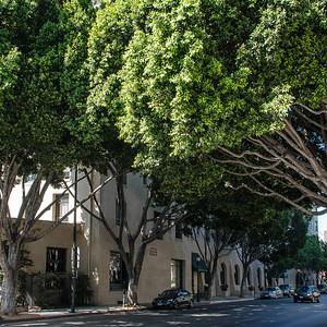Los Angeles Pasadena 2013