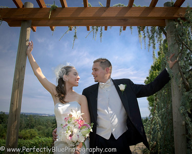 Courtney and Christian - Beckridge Vinyard