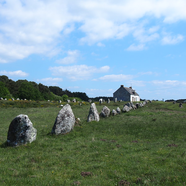 Line of standing stones in Carnac, France.