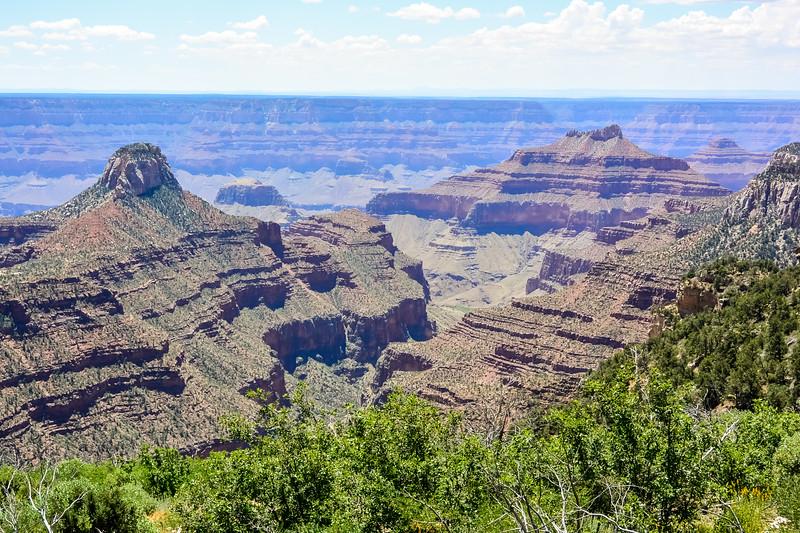2019 Grand Canyon-226.jpg