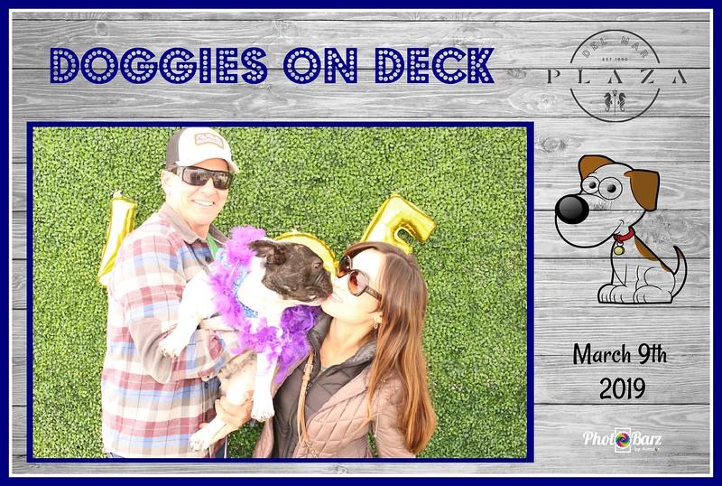 Doggys on Deck37.jpg