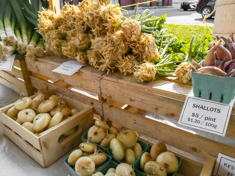 Truro Farmers Market-10.jpg