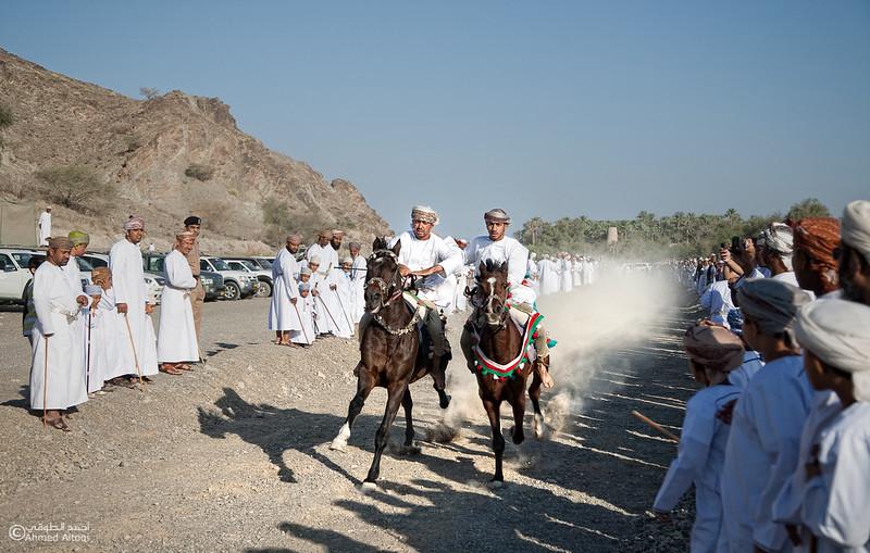 Horses Race  (2).jpg