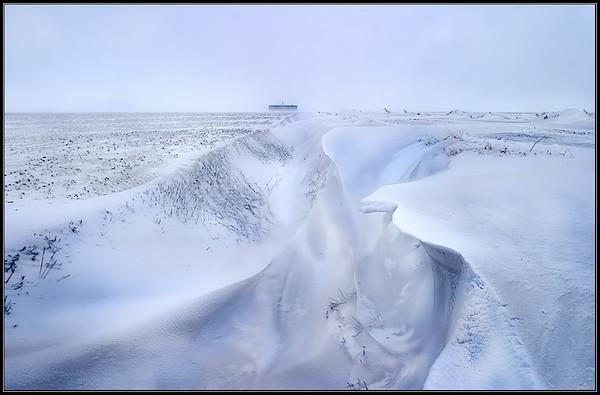 Winter/Winter