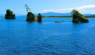 Oregon Coast 21 (33640199).jpg