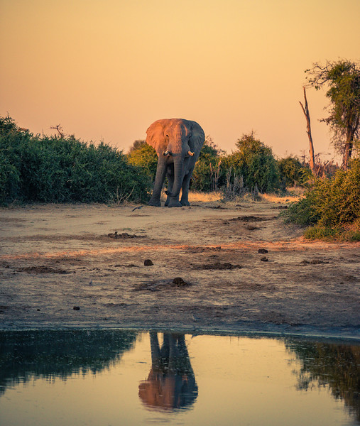 Botswana_June_2017 (4199 of 6179).jpg