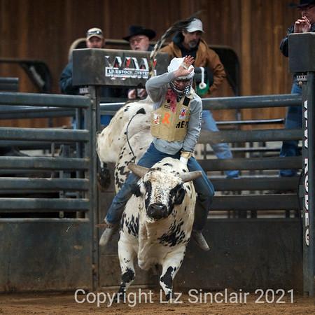 JQH Bucking Bulls Practice