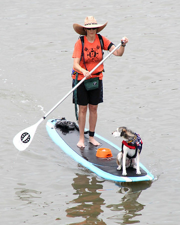 Paddle for Puppies 2012