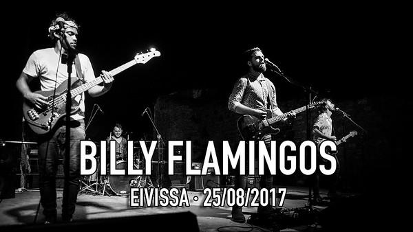 BILLY FLAMINGOS DALT VILA
