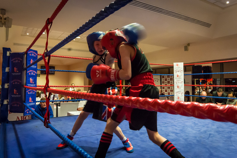 -Boxing Event March 5 2016Boxing Event March 5 2016-11640164.jpg