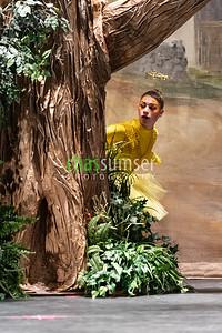 Loudoun Ballet Performing Arts Company