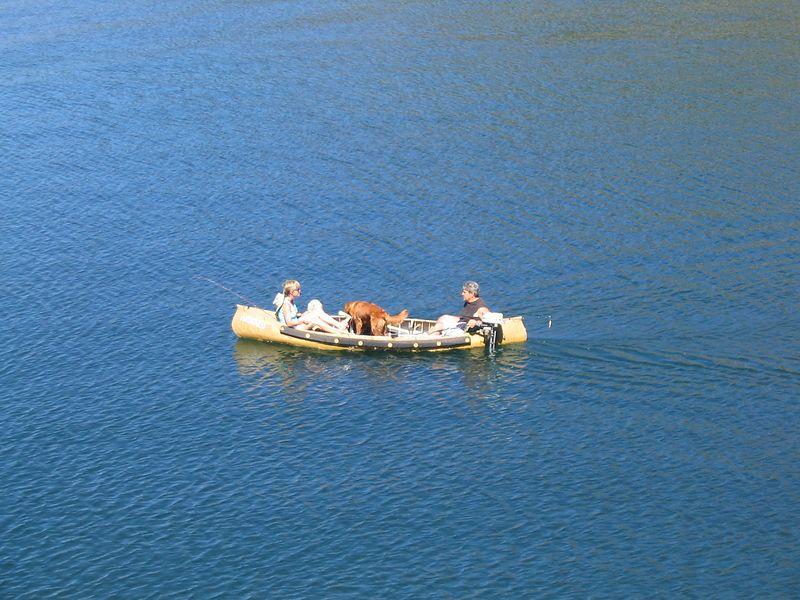 Dogs *like* canoe rides!  Especially golden retrievers!