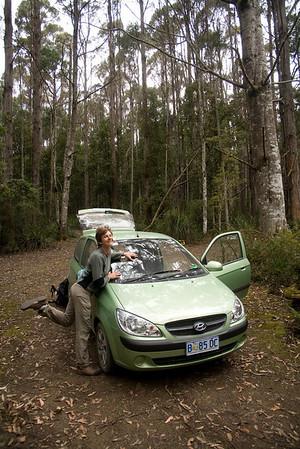 30.12.2010 - Tasmania!