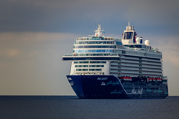 Cruise (2019)