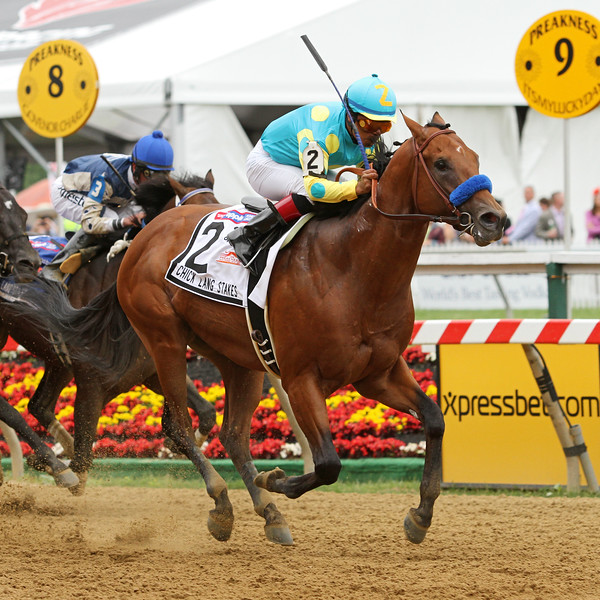 Zee Bros (Brother Derek) and jockey Martin Garcia win the Chick Lang Stakes at Pimlico Racecourse 5/18/13. Trainer: Bob Baffert. Owner: Zayat Stables
