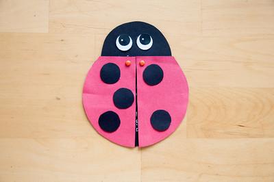Charlotte's 5th Birthday Party - Ladybug Picnic