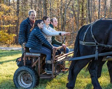 Bob Capobianco Horse Logging