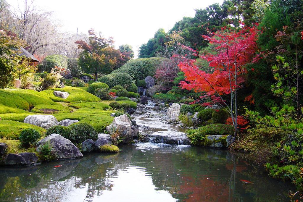 Taizo-in, Yoko-en (Garden) -1 (November 2011)