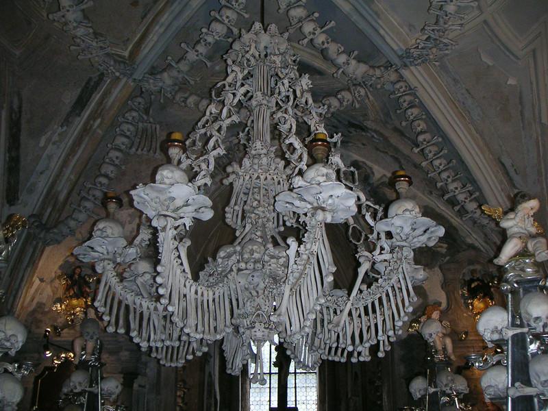 16 Bone Chandelier.JPG