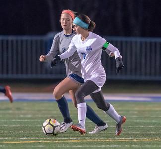 St. Francis girls soccer vs. Oswego