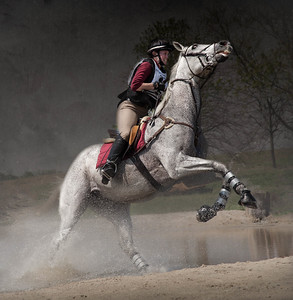 Horses - Eventing