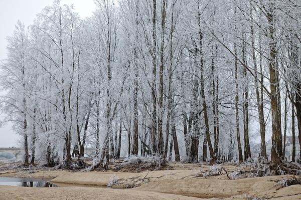 Orléans - La Loire en hiver