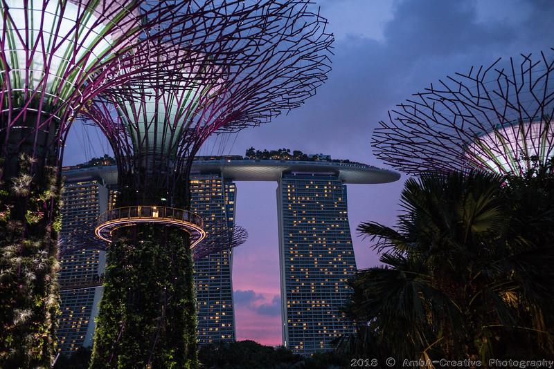 2018-07-18_FunWithFamily@GardensByTheBay_SingaporeSG_57.JPG