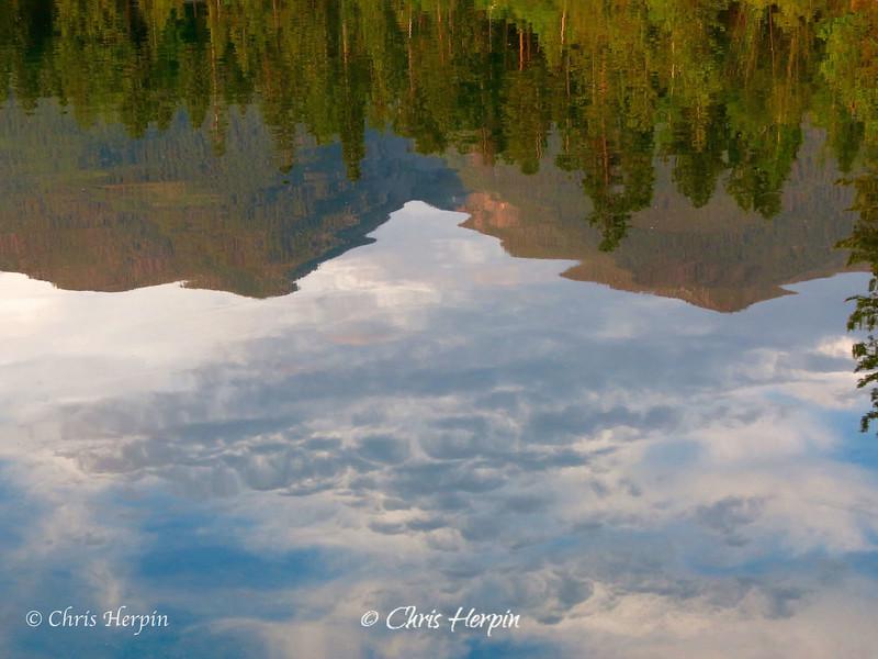 Watermark-36.jpg