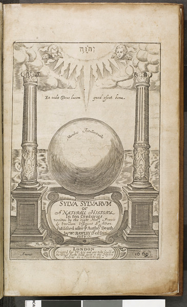 Sylva sylvarum, or, A natural history in ten centuries : whereunto is newly added the History natural and experimental of life and death, or of the prolongation of life : whereunto is added Articles of enquiry, touching metals and minerals, and the New Atlantis