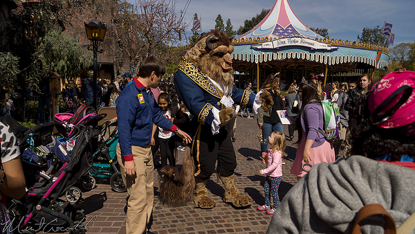 Disneyland Resort, Disneyland, Fantasyland, Beauty And The Beast, Beauty, Beast