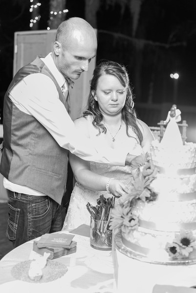 ELP0224 Sarah & Jesse Groveland wedding 3609.jpg