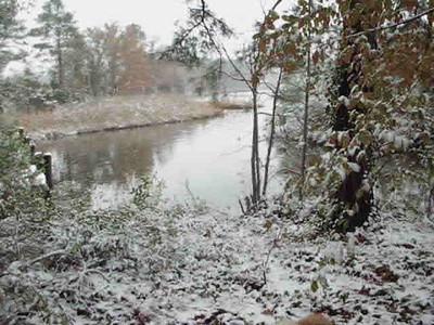 Test Video Snow Back Yard