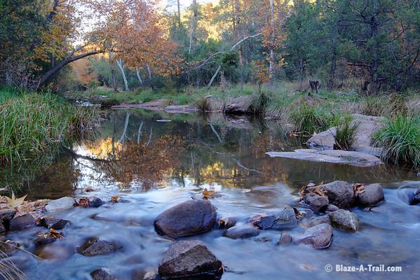 East Verde River (Mogollon Rim, AZ)