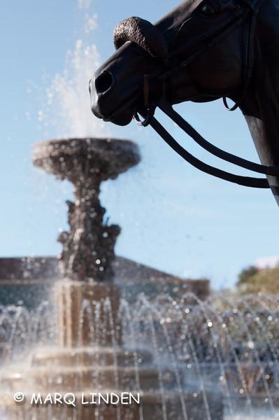 Santa Anita Shoot 12292011.jpg