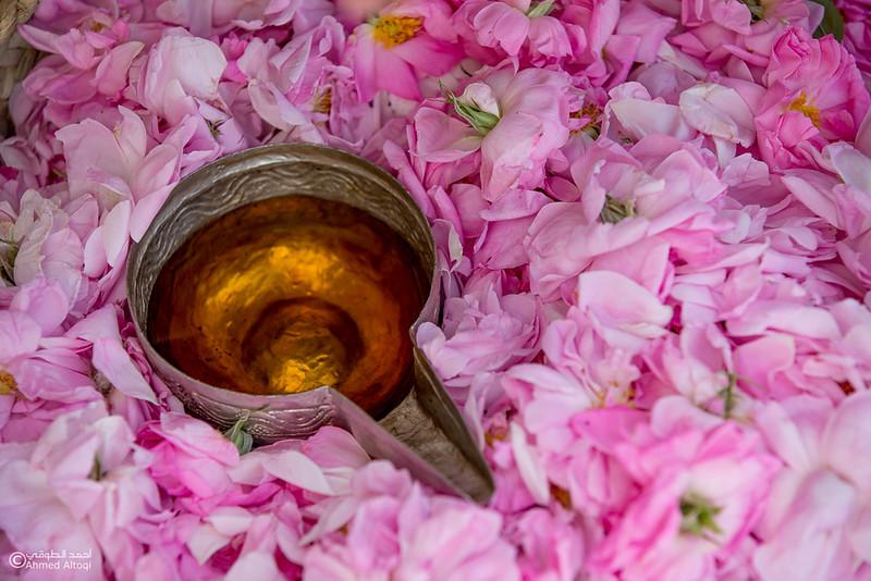 Roses Water (50)-Aljabal Alakhdhar-Oman.jpg