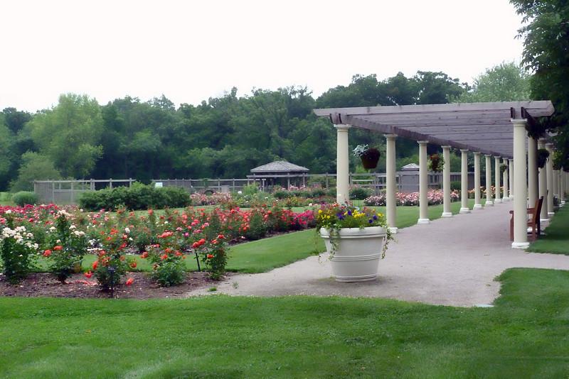 Rose & Idea garden.jpg