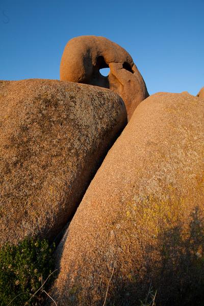 Roch formation in Joshua Tree National Park