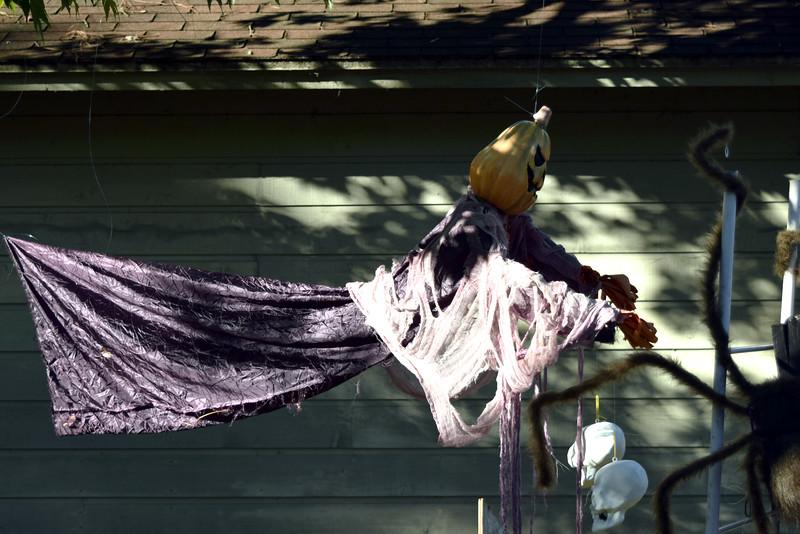 2014 Halloween Bovaween at the BooOOoo-va house (8).JPG