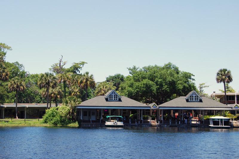 2014 Silver Springs, Florida (17).JPG