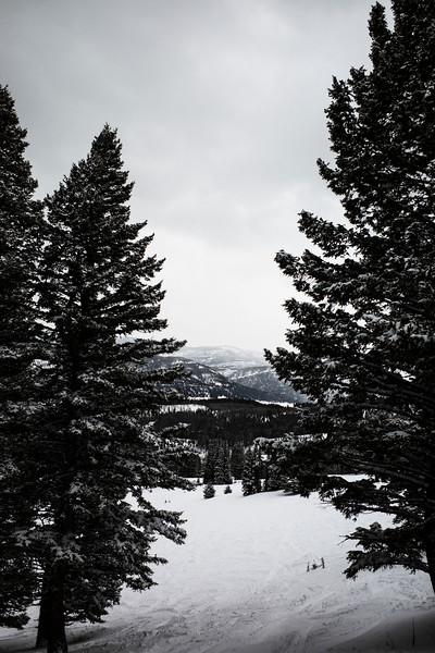 2020-0106 Bridger Bowl Ski Trip - GMD1017.jpg
