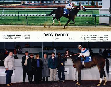 BABY RABBIT - 11/09/96